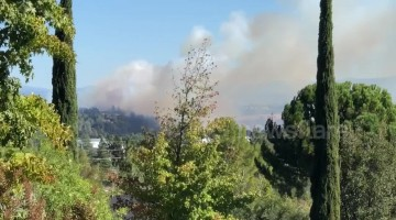 Northern California fire grows to 38 acres, forces evacuations