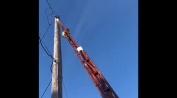 Firefighters help encourage kitty cat down pole