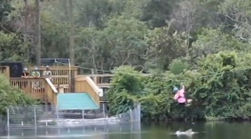 Alligator Leaps Out Of The Water Attempting To Bite Woman On Zipline