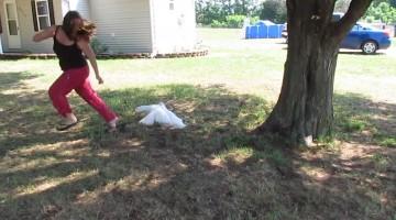 Attack of the Killer Ducks!