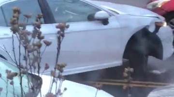 Driver Experiencing Some Serious Struggles