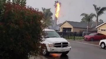 Lightning Sets Palm Tree on Fire