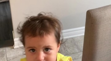 Toddler and Dad Have an Adorable Dispute