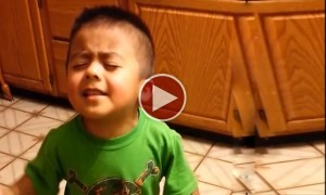 This 3 Year Old Boy Has The Greatest Argument Of All Time!