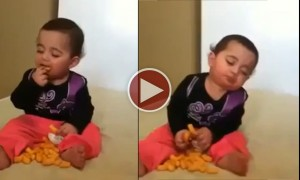 Watch A Baby Make The Toughest Descision Of Its Life. To Eat Or To Sleep