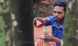 We Never Imagined You Could Do This With Bamboo trees! You Have To See It To Believe It