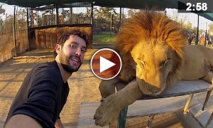 Watch This Awesome 3 Year Selfie Of A Guy Who Traveled Around The World