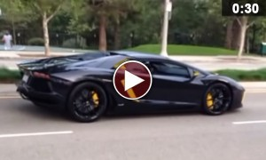 Car Lovers, LOOK AWAY! A Vigilante Smashes A Lamborghini Aventador With A Rock!