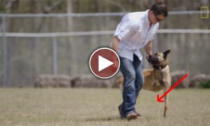 Everyone Around Him Told Him Not To Adopt This Dog! But He Did It Anyway...