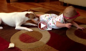 CUTEST Video Ever! Puppy Teaches Baby How To Crawl