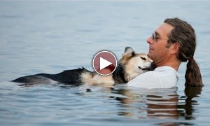 If You Cannot Shed A Tear After Watching This Video, I Have Nothing To Say To You!