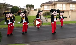 A Guy Put On A Mickey Mouse Suit And Danced In The Street To Give His Girlfriend The Surprise Of A Lifetime!