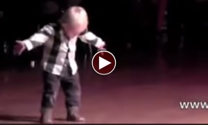 This Little Fella Rolled The Whole Crowd With Laughter With Some Of His Jive Moves