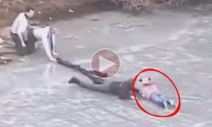 This Video Will Restore Your Faith In Humanity. The Most Meaningful Thing You Will See Today