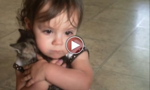 OMG! This Cute Little Girl Really LOVES Her Kitty. ADORABLE