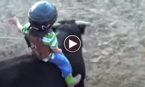 Watch A Father Let His 4 Year Old Son Ride Fierce Rodeo Bull!