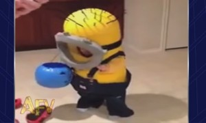 Watch This Little Kid Gets Ready For A Halloween Party But Fails Adorably