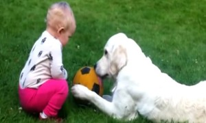 Watch These Cute Babies And Dogs Having The Most Adorable Conversation Ever!