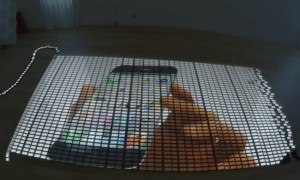 This Outrageous 10,000 iPhone 5 Domino Video Is Pretty Epic