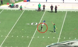 Watch A Super Dog Blow Away An Audience At A Football Game With Spectacular Tricks