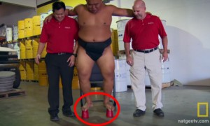 A Sumo Wrestler Couldn't Crush 2 Paper Cups Because They Were Covered With A Magic Paint