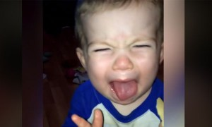 Cute Babies Reaction When They Taste Salt And Vinegar