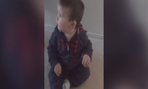 Baby Can't Stop Dancing When Mom Turns on Hairdryer