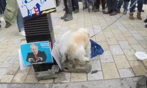 Remainer dog poos on Nigel Farage