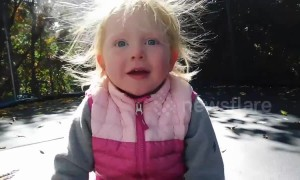 Toddler's hair becomes an adorable static mess after jumping on trampoline