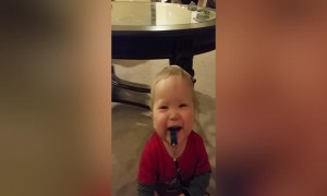 Baby Cracks Up at The Sound of His Whistle