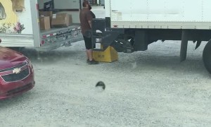 Man Carelessly Tosses Packages onto Truck