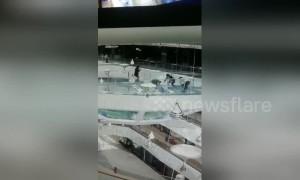 Woman falls into shark tank at Chinese mall