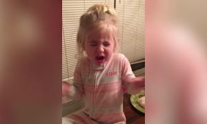 Girl Reacts to Trying Tomato for the First Time