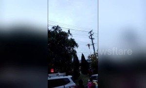 "Chinese man filmed ""tightrope walking"" on high-voltage power lines"