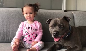 Baby and dog have same priceless reaction after tasting lime