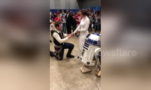 Han Solo proposes to Princess Leia at Arkansas Comic-Con