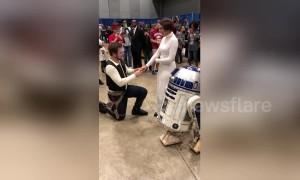 Han Solo proposes to Princess Leia at Arkansas Comic-Con
