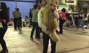 Doggy Dancing Partner