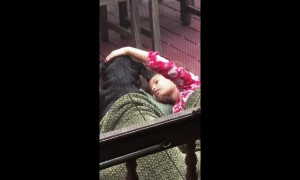 Too cute! Little girl sings sweetly to family dog