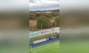 Fan chucked out of Falkirk stadium climbs tree to watch game
