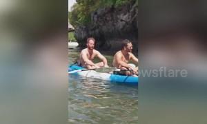Bizarre moment 'ewok-like troll monkeys' make strange noise on Thai island