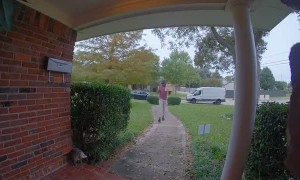 Opossum Seriously Spooks Delivery Man