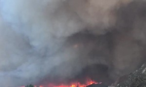 Emotional Escape from Fires in California