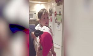 Baby's Amazed Reaction to Christmas toy will Melt your Heart!