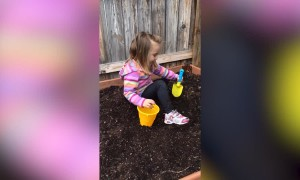 Kids Try Gardening – So Funny