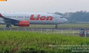 Planes halted on runway at Indonesian airport by invasion of birds
