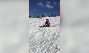 Kids Sledding Will make You LOL