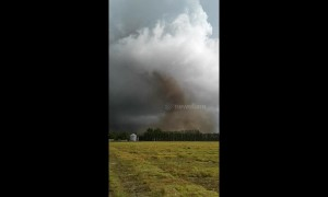 Tornado rips through New Zealand's South Island