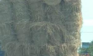 Overloaded Truck Hauling Hay