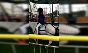 Chinese merry-go-round with real horses kicks up controversy